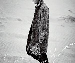 lee min ho, handsome, and korean actor image