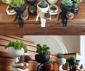 cactus, inspiration, and pots image