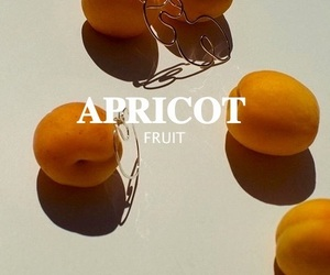 apricot, food, and fruit image