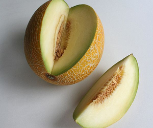 cantaloupe, melon, and galia image