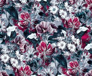 background, botanical, and Collage image