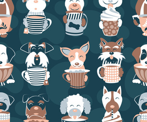 animal, animals, and background image