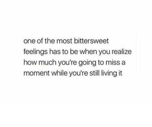 bittersweet, memories, and quotes image