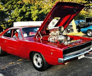 muscle car, red, and hot rods image