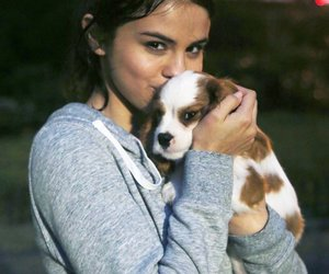 selena gomez, dog, and selena image
