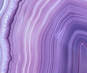 purple, wallpaper, and white image