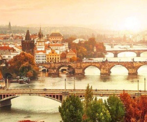 city, autumn, and bridge image