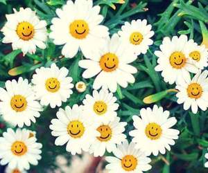 flowers, happy face, and white image
