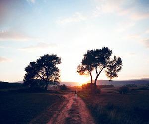 amazing, nature, and sunset image