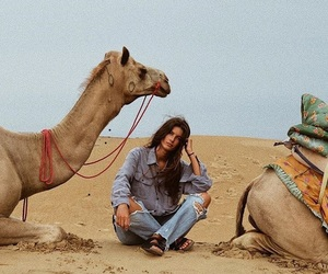 camel, girl, and photography image