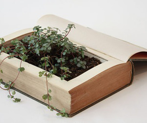 book, green, and plants image