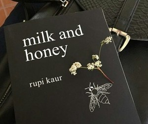 aesthetic and milk and honey image