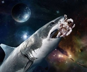 shark and space image