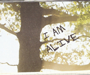 alive, text, and tree image