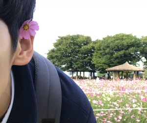 beauty, boy, and flower image