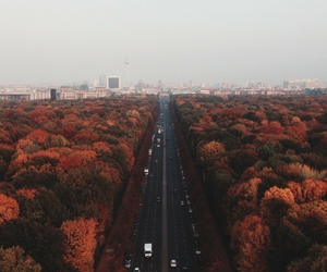 autumn, city, and road image