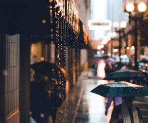 autumn, rain, and fall image