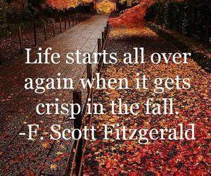 autumn, fall, and life image