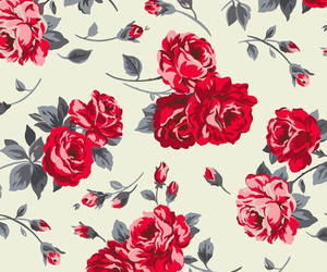 flowers, background, and roses image