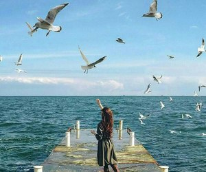 birds, girl, and sea image