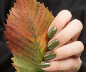 autumn, green, and nails image