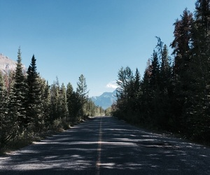 canada, highway, and landscape image