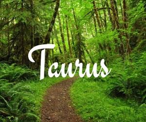 horoscope, spring, and taurus image