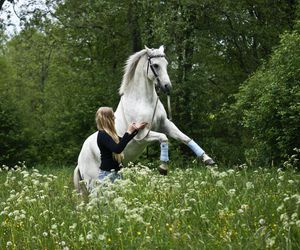 blond, girl, and horse image