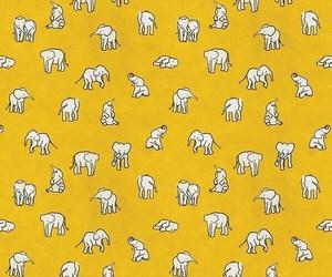elephant, yellow, and background image