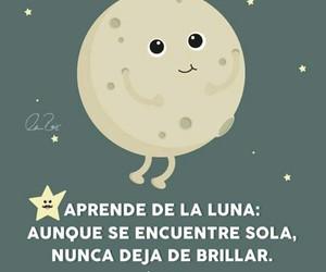 luna, moon, and stars image
