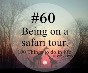safari, 60, and 100 things to do in life image