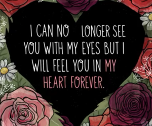 forever, heart, and quotes image