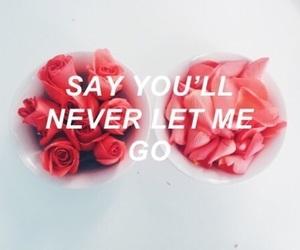 roses, Lyrics, and music image