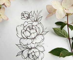 drawing, flowers, and painting image