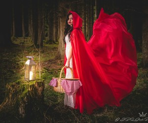 fairy tale, red, and wolves image