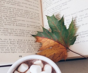 book, autumn, and fall image