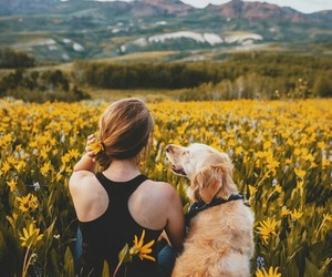 dog, flowers, and mountains image