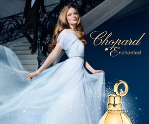advertisement, cinderella, and must haves image