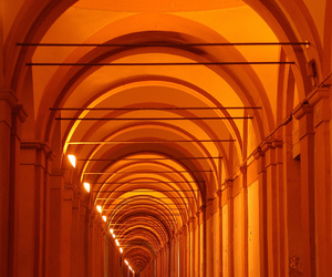 curves, lines, and orange image