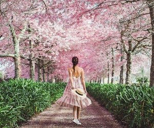 pink, pretty, and spring image