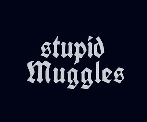 muggles, harry potter, and hogwarts image
