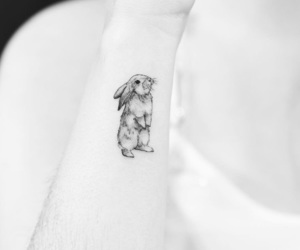 animal, bunny, and ink image