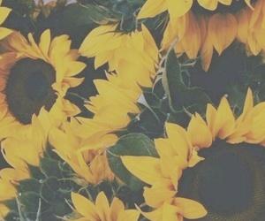 blog, depression, and mental illness image