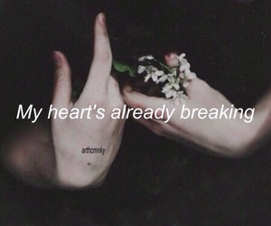 quotes, tumblr, and background image