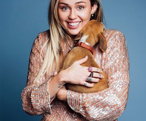 miley cyrus, dog, and smilers image