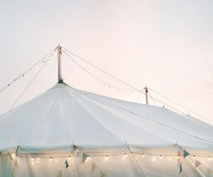 light, circus, and tent image