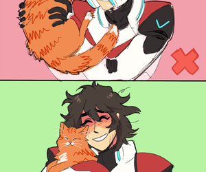 cat, cats, and keith image