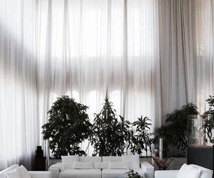 interior, design, and plants image