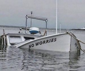 funny, no worries, and lol image