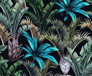 background, exotic, and flower image